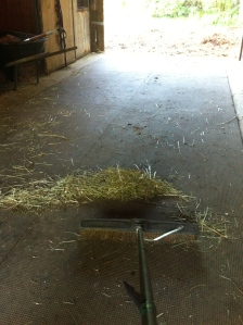 Then we head back to the barn to clean up all the left over hay.