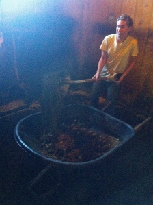 Mucking = Removing all the horse's poop from the  night :)